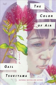 FIC Color of air
